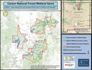 Carson National Forest Wetlands Map